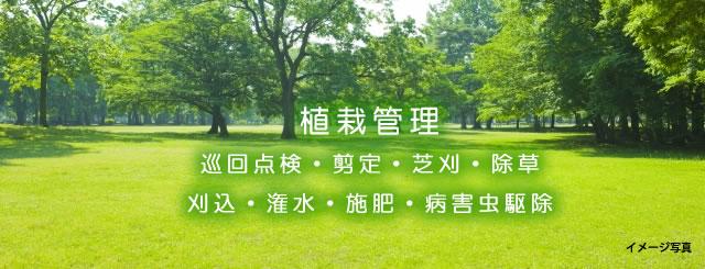 植栽管理業務の写真